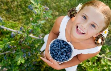 ブルーベリーサプリおすすめ口コミランキング2019|抗酸化作用で元気を取り戻せる8選