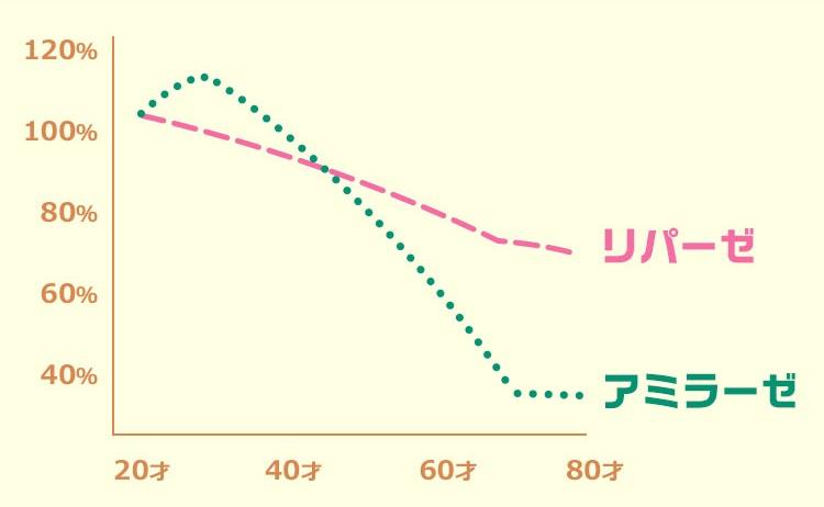 体内酵素 20代ピーク 肌 体型